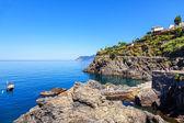 скалистый берег в манарола — Стоковое фото