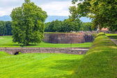 Medieval fortress wall in the Italian town of Lucca — Stock Photo