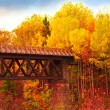 Country Bridge — Stock Photo #12099946