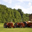 Row of Vintage Tractors — Stock Photo