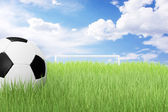 Soccer ball on green field — Стоковое фото