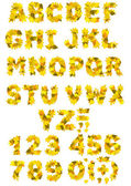 Alfabetet - bokstäver och siffror med höstlöv — Stockfoto
