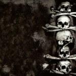 Human skulls and bones — Stock Photo #13411089