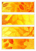 Collection of autumn banners — Foto de Stock