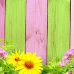 Summer background — Stock Photo #23211316