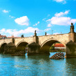 Charles bridge in Prague — Stock Photo #24338801