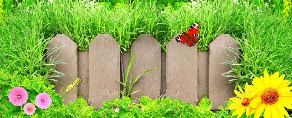 木栅栏, 鲜花和绿草