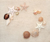 Starfishes and conches on canvas texture — Stock Photo