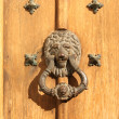 Antique handle with lion head — Stock Photo