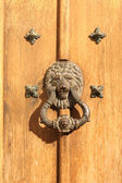 Antique handle with lion head — 图库照片