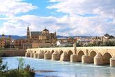 Great Mosque and Roman Bridge, Cordoba, Spain — Stock Photo