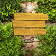 Ivy and wooden sign on ancient wall — Stock Photo