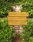 Edera e un cartello in legno su muro antico — Foto Stock