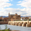 Stock Photo: Great Mosque and RomBridge, Cordoba, Spain