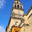 Stock Photo: Great Mosque, bell tower, Cordoba, Spain