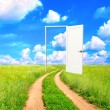 Stock Photo: Open door in field