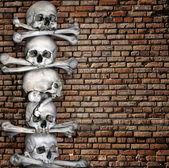 Lidských lebek a kostí — Stock fotografie