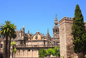 Cathedral and Giralda Tower of Seville, Spain — Stock Photo
