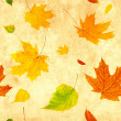 Stock Photo: Seamless grunge background with flying autumn leaves