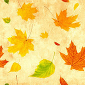 Seamless grunge background with flying autumn leaves — Stock Photo