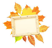 Autumn leaves and wooden frame — Stock Photo