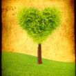 Heart shape tree — Stockfoto