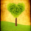 Heart shape tree — Stock Photo