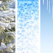 Set of winter banners — Stock Photo