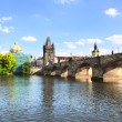 Charles bridge in Prague — Stock Photo #37422769