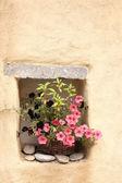 Vaso di fiori con petunie — Foto Stock