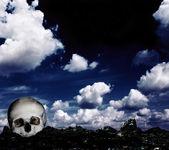 Lebka na zemi — Stock fotografie