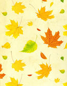 Grunge background with flying autumn leaves — Photo