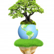Earth, flying island and tree — Stock Photo #48869441