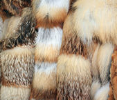 Row of fur coats of different colors — Stock Photo
