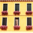 Windows with geranium — Stock Photo #51359943