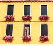 Windows z geranium — Zdjęcie stockowe