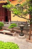 Yard in Jade Buddha Temple, Shanghai, China — Stock Photo