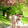 Beautiful newlywed couple having a stroll in park at spring — Stock Photo #12013050