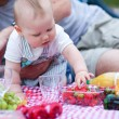 Adorable little boy on his first picnic — Stock Photo