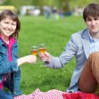Young couple having a picnic — Stock Photo #12019222