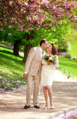 Beautiful newlywed couple kissing in park at spring — Stock Photo