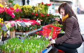 Beautiful girl selecting flowers at market — Stock Photo