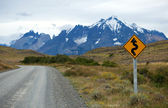 Road in the national park Torres del Paine, Patagonia, Chile, So — Stockfoto