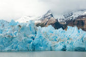 Blue icebergs and snowy mountains at Grey Glacier in Torres del — Stock Photo