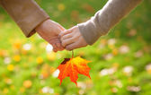 Male and female hands holding a red maple leaf — Stock Photo