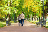 Couple in love walking in park by fall — Stock Photo