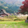 Houses in historic village Shirakawa-go, Gifu prefecture, Japan — ストック写真