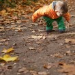 Adorable toddler boy in autumn forest — Stock Photo
