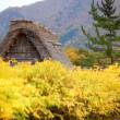 House in historic village Shirakawa-go, Gifu prefecture, Japan — Foto de Stock