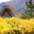 House in historic village Shirakawa-go, Gifu prefecture, Japan — Stockfoto